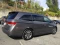 Honda Odyssey Touring Elite Smoky Topaz Metallic photo #4