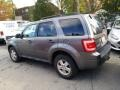 Ford Escape XLT V6 4WD Sterling Gray Metallic photo #4