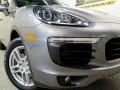 Porsche Cayenne S Palladium Metallic photo #6
