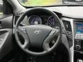 Hyundai Sonata GLS Black Plum Pearl photo #15