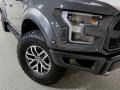 Ford F150 SVT Raptor SuperCrew 4x4 Lead Foot photo #10