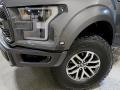 Ford F150 SVT Raptor SuperCrew 4x4 Lead Foot photo #11
