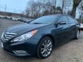 Hyundai Sonata Limited 2.0T Pacific Blue Pearl photo #8
