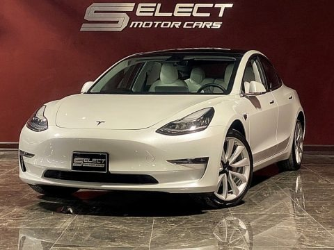 Pearl White Multi-Coat 2019 Tesla Model 3 Long Range