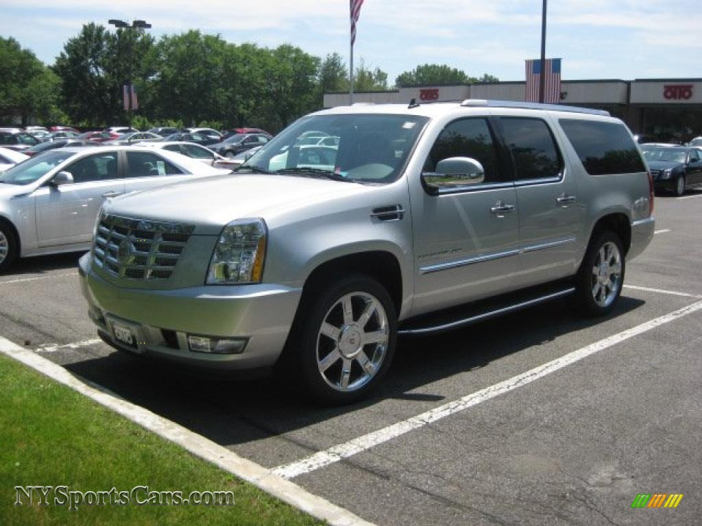 2010 cadillac escalade esv platinum awd in silver lining. Black Bedroom Furniture Sets. Home Design Ideas