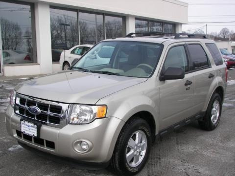 Ford Escape 2010 Xlt. 2010 Ford Escape XLT 4WD