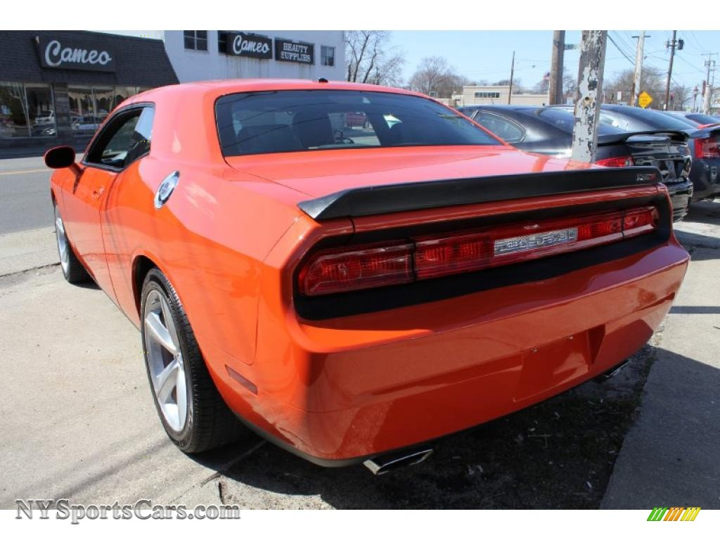 2008 dodge challenger srt8 in hemi orange photo 3 289278 cars for sale. Black Bedroom Furniture Sets. Home Design Ideas
