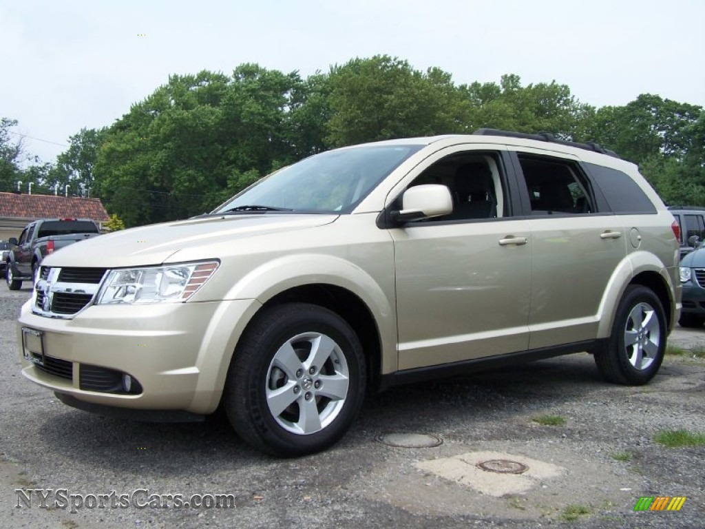 2010 Dodge Journey Sxt In White Gold 138108
