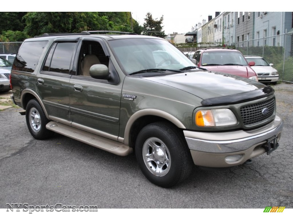 2001 ford expedition eddie bauer 4x4 in estate green. Black Bedroom Furniture Sets. Home Design Ideas