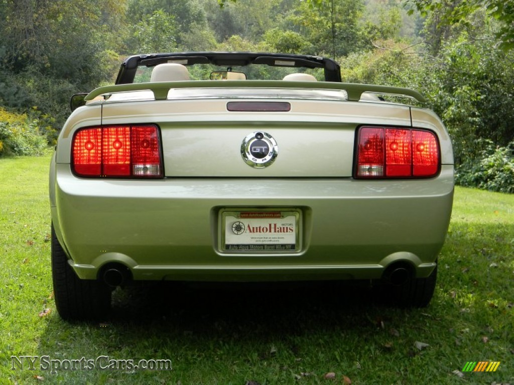 2006 Ford Mustang Gt Premium Convertible In Legend Lime Metallic Photo 8 246530