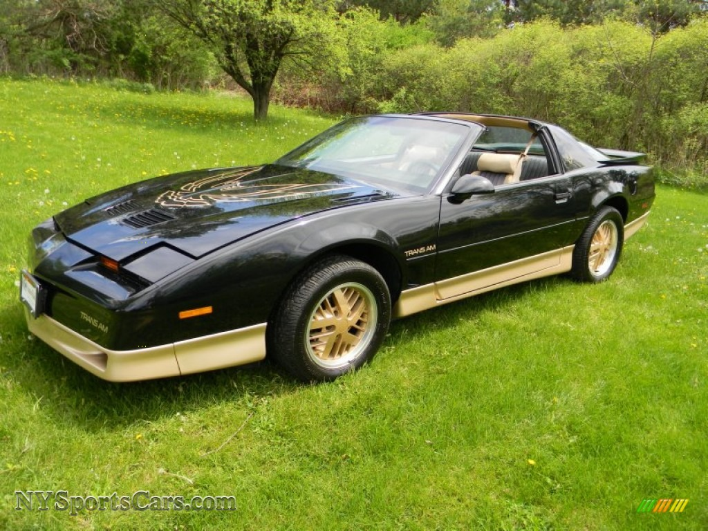 1986 Pontiac Firebird Trans Am In Black Photo 2 240346
