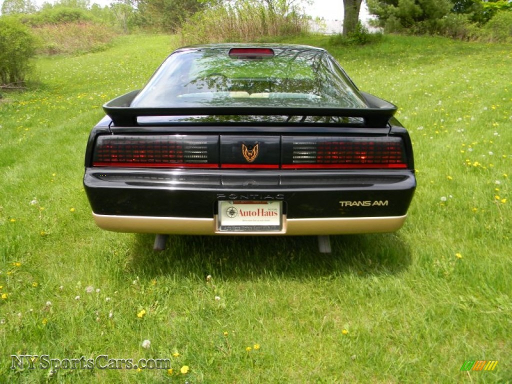 1986 pontiac firebird trans am in black photo 12 240346 nysportscars com cars for sale in new york nysportscars com