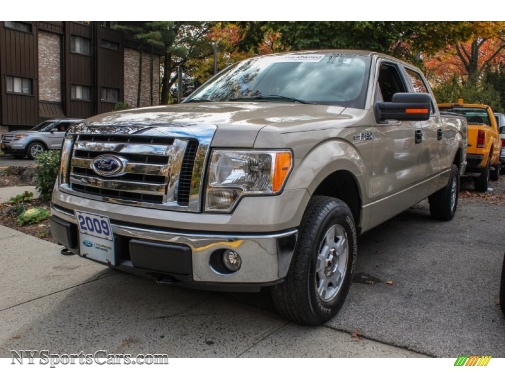 2009 F150 Xlt Supercrew 2009 F150 Xlt Supercrew 4x4